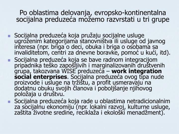 Po oblastima delovanja, evropsko-kontinentalna socijalna preduzeća možemo razvrstati u tri grupe