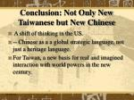 conclusion not only new taiwanese but new chinese