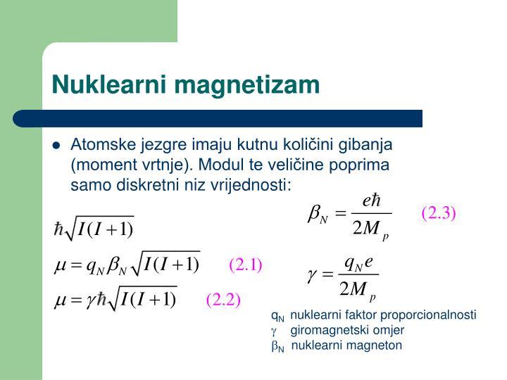 Nuklearni magnetizam