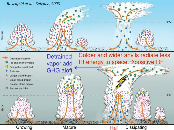 Rosenfeld et al., Science, 2008