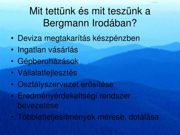 Mit tettünk és mit teszünk a Bergmann Irodában?