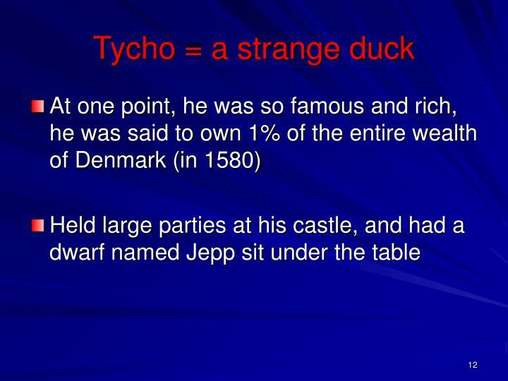 Tycho = a strange duck