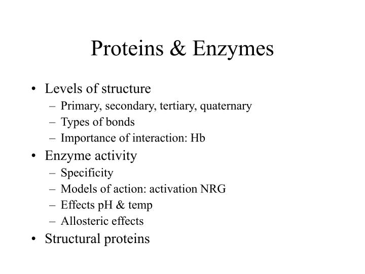 Proteins enzymes