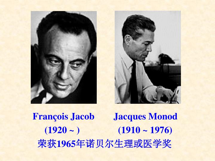 Franois Jacob        Jacques Monod