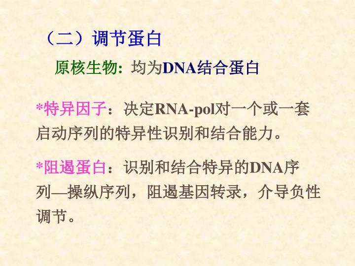 (二)调节蛋白