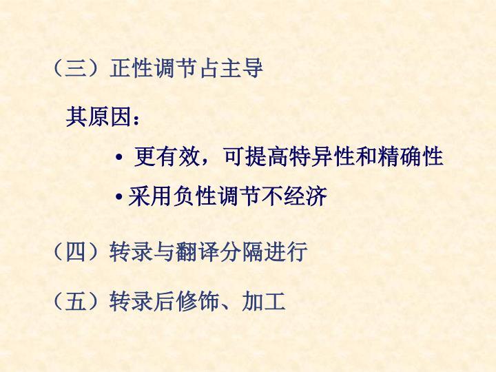 (三)正性调节占主导