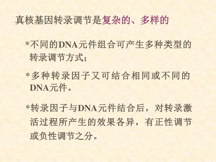 真核基因转录调节是
