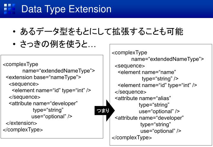 Data Type Extension