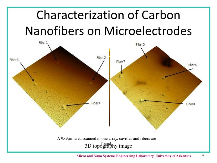 Characterization of Carbon Nanofibers on Microelectrodes