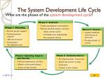 the system development life cycle1