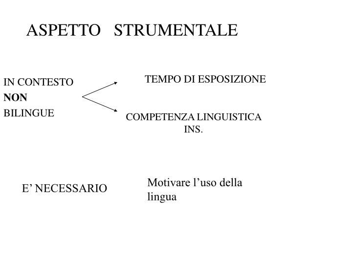 ASPETTO   STRUMENTALE