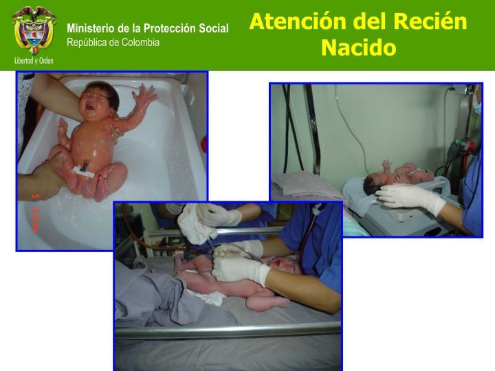 Atención del Recién Nacido