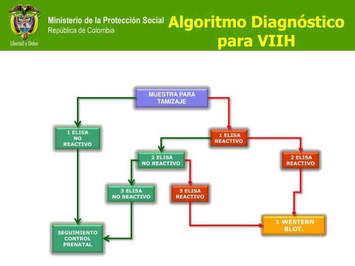Algoritmo Diagnóstico para VIIH