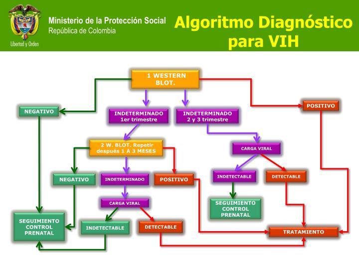 Algoritmo Diagnóstico para VIH