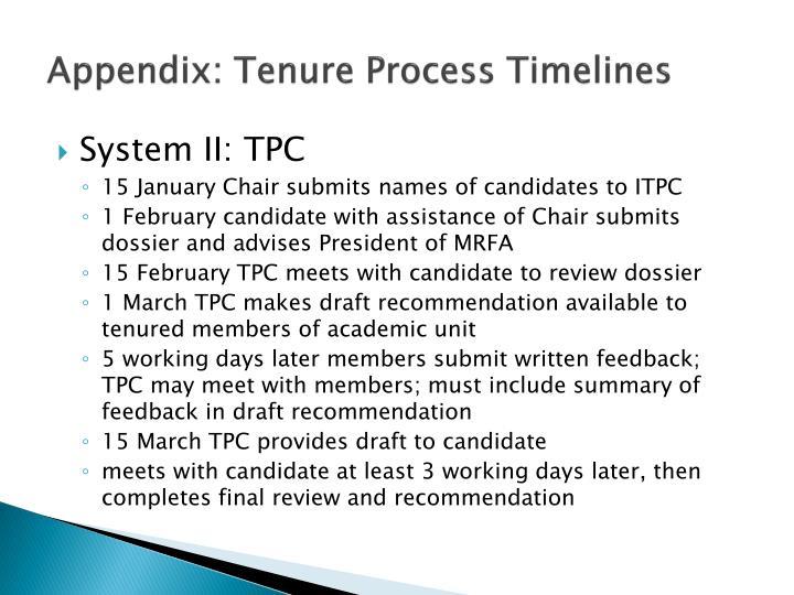 Appendix: Tenure Process Timelines