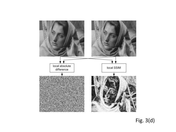 Fig. 3(d)
