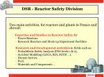 dsr reactor safety division