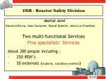 dsr reactor safety division1