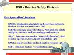 dsr reactor safety division2