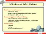 dsr reactor safety division4