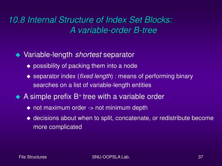 10.8 Internal Structure of Index Set Blocks:
