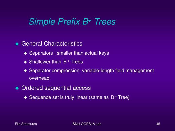 Simple Prefix B