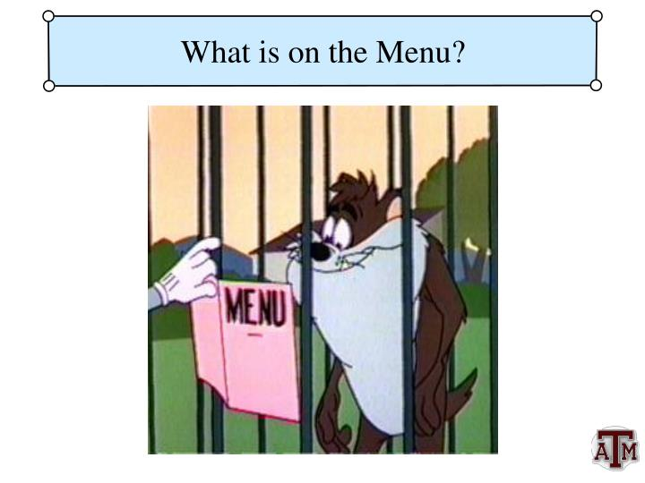What is on the menu