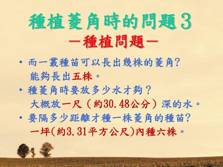 種植菱角時的問題3
