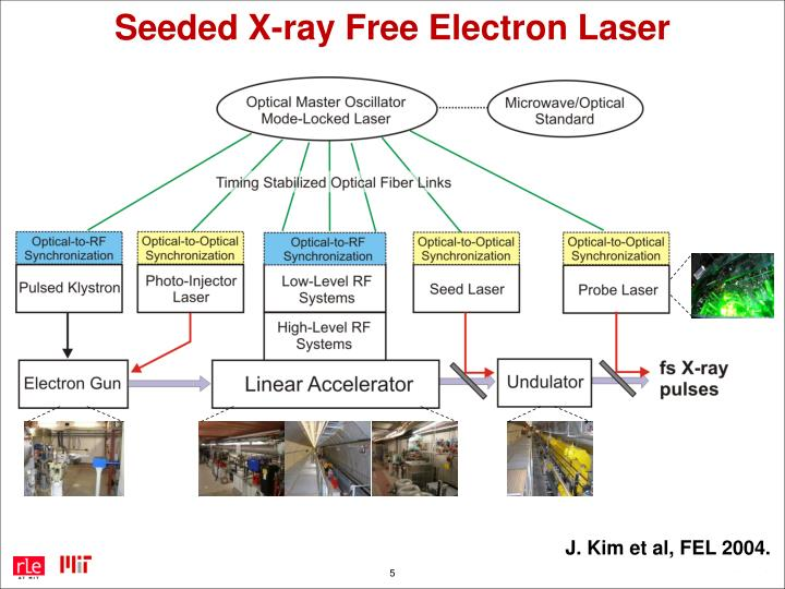 Seeded X-ray Free Electron Laser