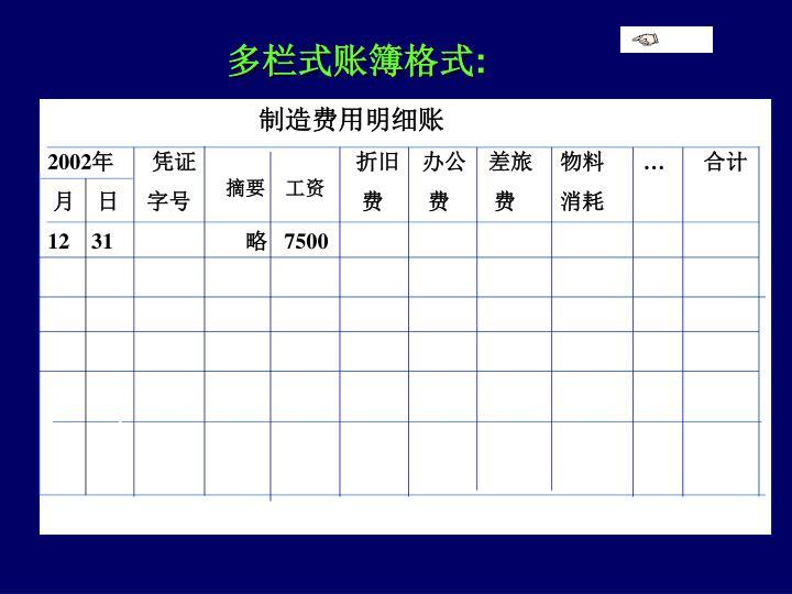 多栏式账簿格式