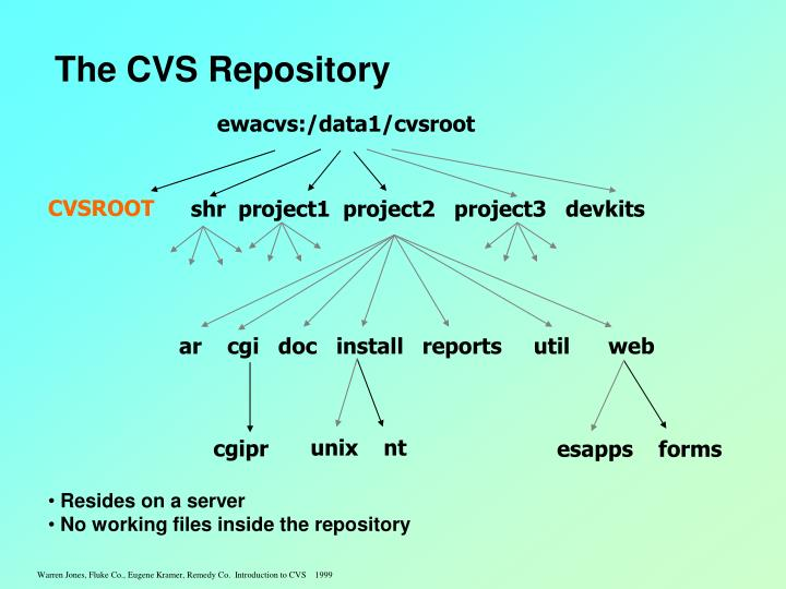 The cvs repository