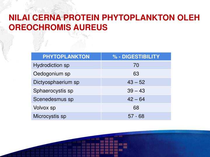 NILAI CERNA PROTEIN PHYTOPLANKTON OLEH OREOCHROMIS AUREUS