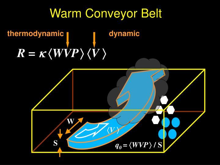 Warm Conveyor Belt