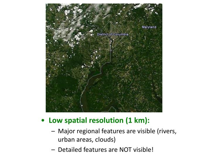 Low spatial resolution (1 km):