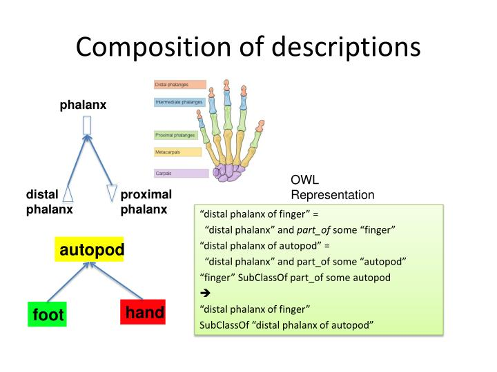 Composition of descriptions