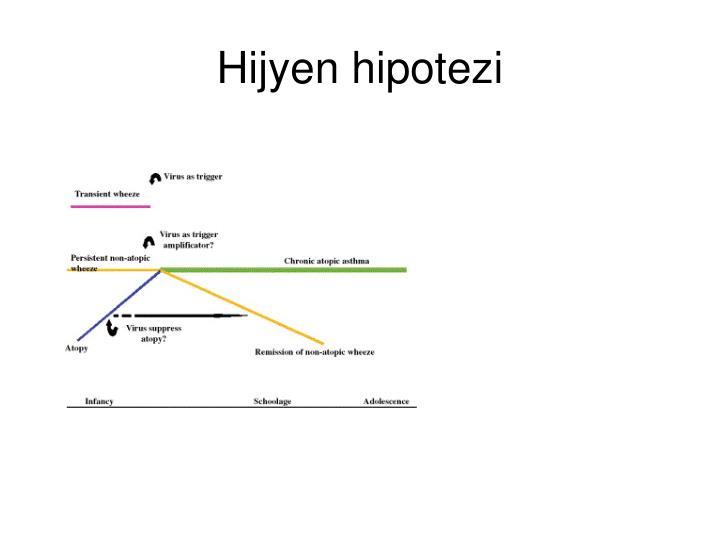 Hijyen hipotezi