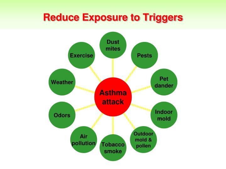 Reduce Exposure to Triggers