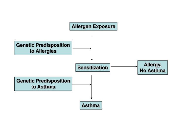 Allergen Exposure