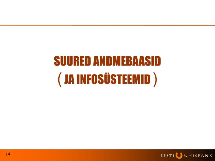 SUURED ANDMEBAASID