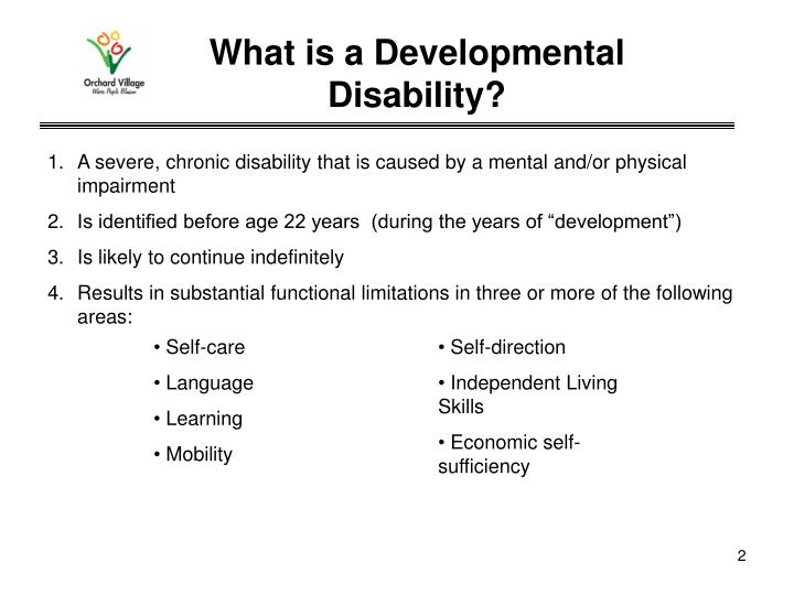 What is a developmental disability