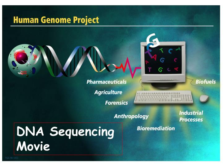 DNA Sequencing Movie