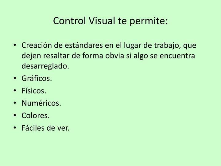 Control Visual te permite: