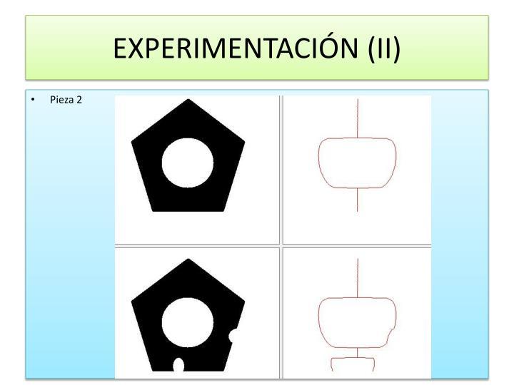 EXPERIMENTACIÓN (II)