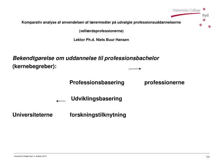 Bekendtgørelse om uddannelse til professionsbachelor