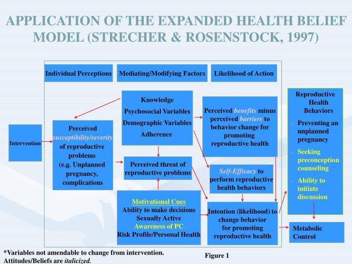 APPLICATION OF THE EXPANDED HEALTH BELIEF MODEL (STRECHER & ROSENSTOCK, 1997)