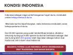kondisi indonesia