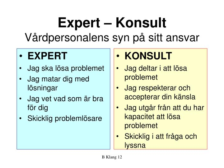 Expert  Konsult