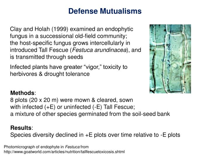 Defense Mutualisms