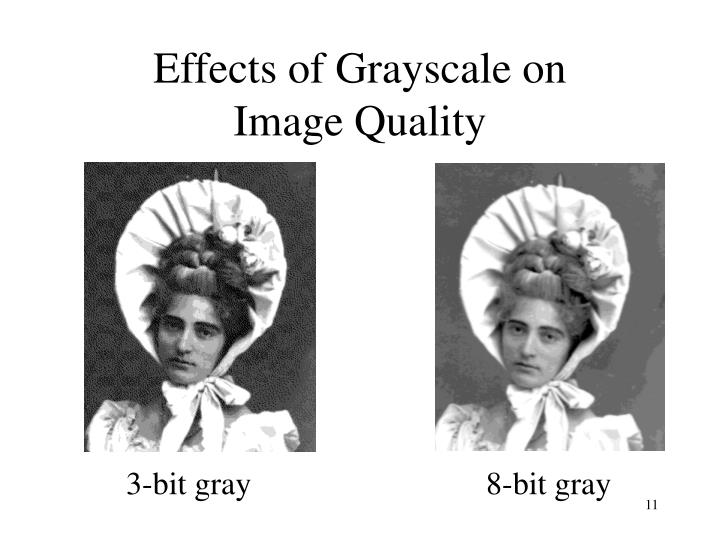 Effects of Grayscale on