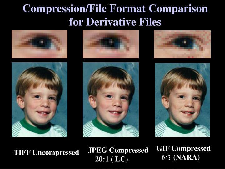 Compression/File Format Comparison